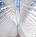 oculus-ny-stephanegroleau-0138-b