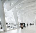 oculus-ny-stephanegroleau-0308-b